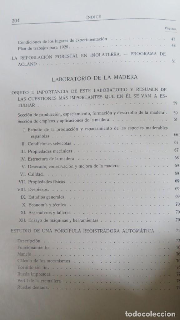 Libros antiguos: 1928.- SERVICIO FORESTAL DE INVESTIGACIONES Y EXPERIENCIAS. AÑO I. Nº1 - Foto 3 - 147598050