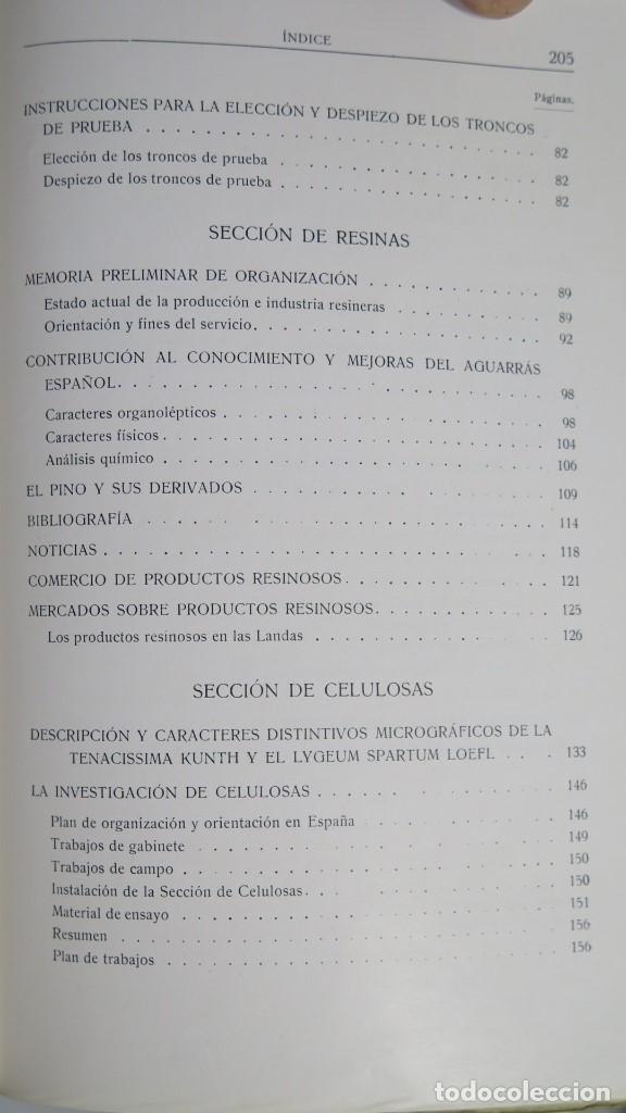 Libros antiguos: 1928.- SERVICIO FORESTAL DE INVESTIGACIONES Y EXPERIENCIAS. AÑO I. Nº1 - Foto 4 - 147598050
