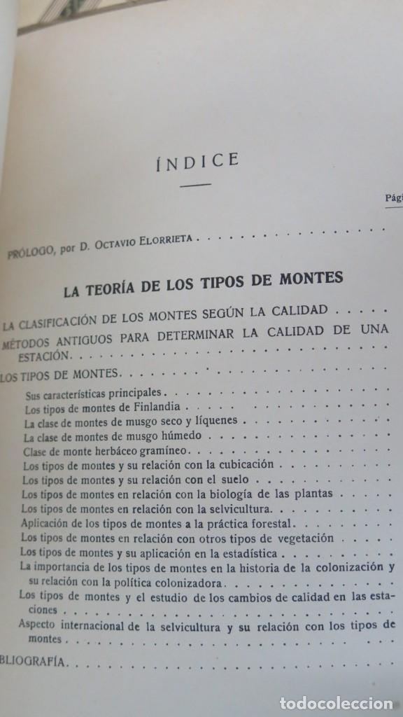 Libros antiguos: 1932.- LA TEORIA DE LOS TIPOS DE MONTES. A.K.CAJANDER - Foto 2 - 147599330