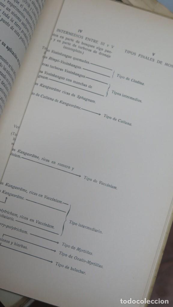 Libros antiguos: 1932.- LA TEORIA DE LOS TIPOS DE MONTES. A.K.CAJANDER - Foto 3 - 147599330