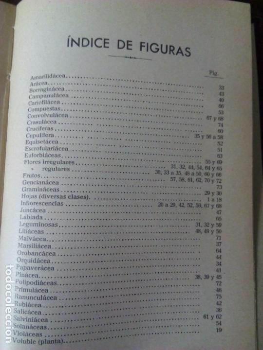 Alte Bücher: Sistemática Vegetal. A. Caballero. 1932. - Foto 4 - 147630338