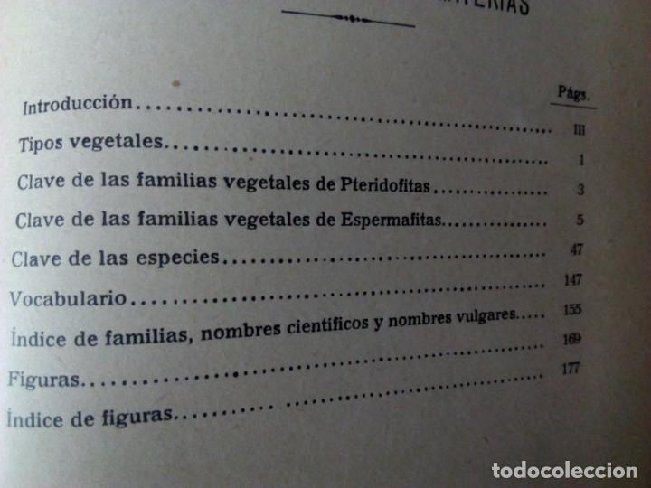Alte Bücher: Sistemática Vegetal. A. Caballero. 1932. - Foto 3 - 147630338