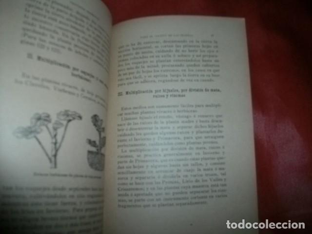 Libros antiguos: GUÍA DEL JARDINERO. NOCIONES DE JARDINERÍA Y ARBORICULTURA. HIJOS DE NONELL, 5ª EDICIÓN - Foto 2 - 147726562