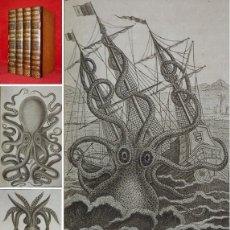Libros antiguos: AÑO 1802 - BUFFON - EL KRAKEN, PULPOS, MOLUSCOS -4 TOMOS- 50 LAMINAS CON GRABADOS - HISTORIA NATURAL. Lote 147791262