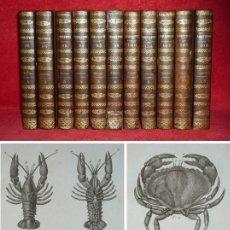 Libros antiguos: AÑO 1804 - BUFFON - INSECTOS Y CRUSTACEOS -11 TOMOS- 93 LAMINAS CON GRABADOS - HISTORIA NATURAL. Lote 148016750