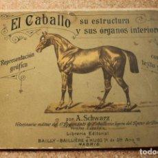 Libros antiguos: EL CABALLO. SU ESTRUCTURA Y SUS ÓRGANOS INTERIORES. REPRESENTACIÓN GRÁFICA, CON UN TEXTO SUCINTO. . Lote 148157850
