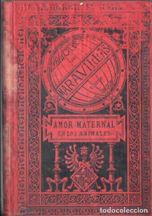 MENAULT : EL AMOR MATERNAL EN LOS ANIMALES (MARAVILLAS, 1885) (Libros Antiguos, Raros y Curiosos - Ciencias, Manuales y Oficios - Bilogía y Botánica)