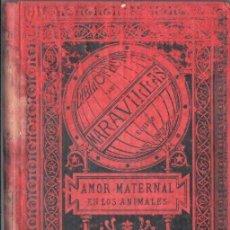 Libros antiguos: MENAULT : EL AMOR MATERNAL EN LOS ANIMALES (MARAVILLAS, 1885). Lote 148942830