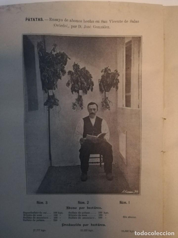 Libros antiguos: La Aplicación de los Abonos. Biblioteca Agronómica Popular - Foto 5 - 149548494