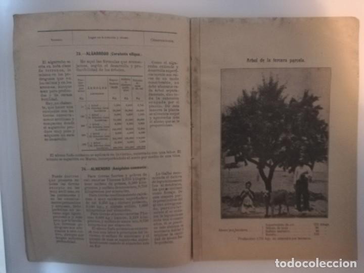 Libros antiguos: La Aplicación de los Abonos. Biblioteca Agronómica Popular - Foto 6 - 149548494