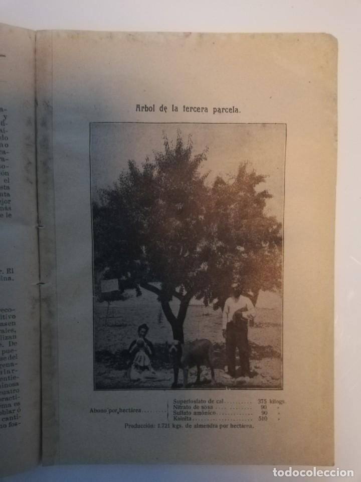 Libros antiguos: La Aplicación de los Abonos. Biblioteca Agronómica Popular - Foto 7 - 149548494