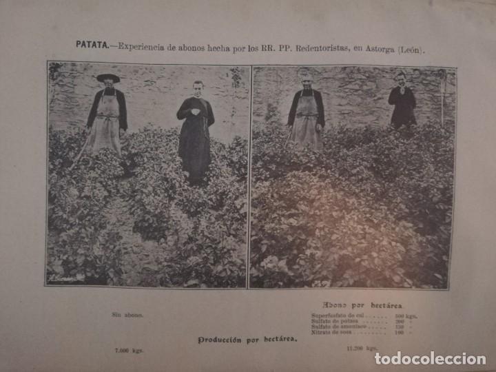 Libros antiguos: La Aplicación de los Abonos. Biblioteca Agronómica Popular - Foto 10 - 149548494