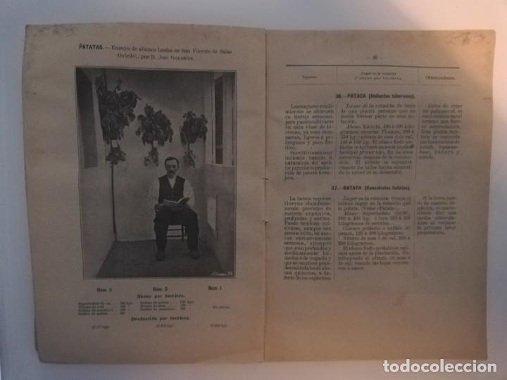 Libros antiguos: La Aplicación de los Abonos. Biblioteca Agronómica Popular - Foto 11 - 149548494