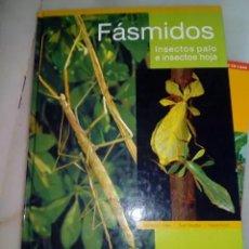 Libros antiguos: FÁSMIDOS INSECTOS PALO E INSECTOS HOJA. Lote 151773378