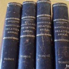 Libros antiguos: MARAVILLAS DE LA VIDA ANIMAL - HAMMERTON - JOAQUIN GIL 1º EDICION ABRIL 1930-COMPLETA 4 TOMOS. Lote 152334230