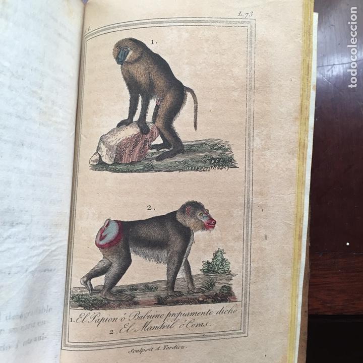 Libros antiguos: Colección Obras Completas de Buffon - Foto 9 - 151907094