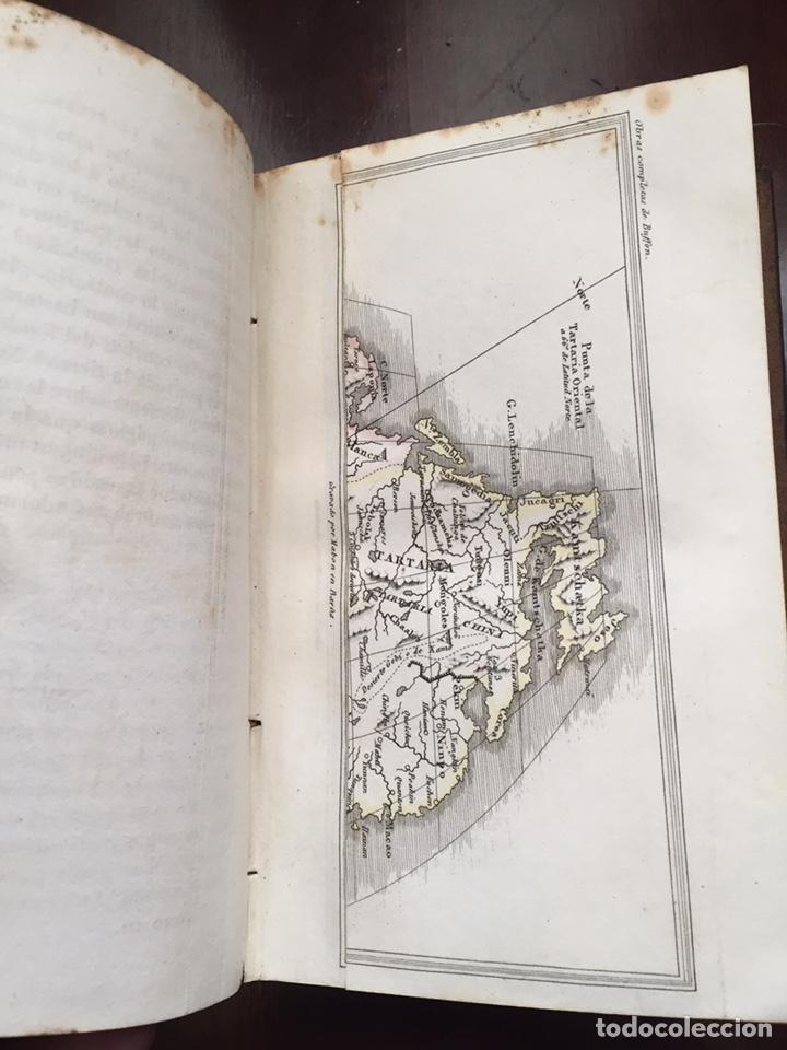 Libros antiguos: Colección Obras Completas de Buffon - Foto 8 - 151907094