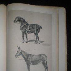 Alte Bücher - BOTIJA Y FAJARDO, Antonio: ATLAS DE AGRICULTURA. 1878 - 46761161