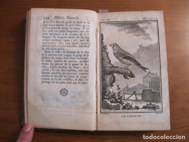 Libros antiguos: Histoire Naturelle, générale et particuliere, Tomo VII, 1779. Buffon. Con numerosos grabados - Foto 4 - 153434185