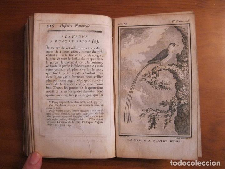 Libros antiguos: Histoire Naturelle, générale et particuliere, Tomo VII, 1779. Buffon. Con numerosos grabados - Foto 5 - 153434185