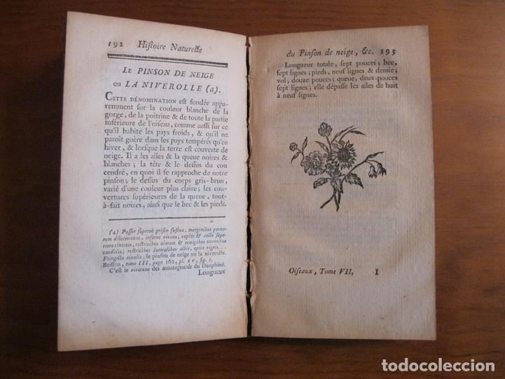 Libros antiguos: Histoire Naturelle, générale et particuliere, Tomo VII, 1779. Buffon. Con numerosos grabados - Foto 6 - 153434185