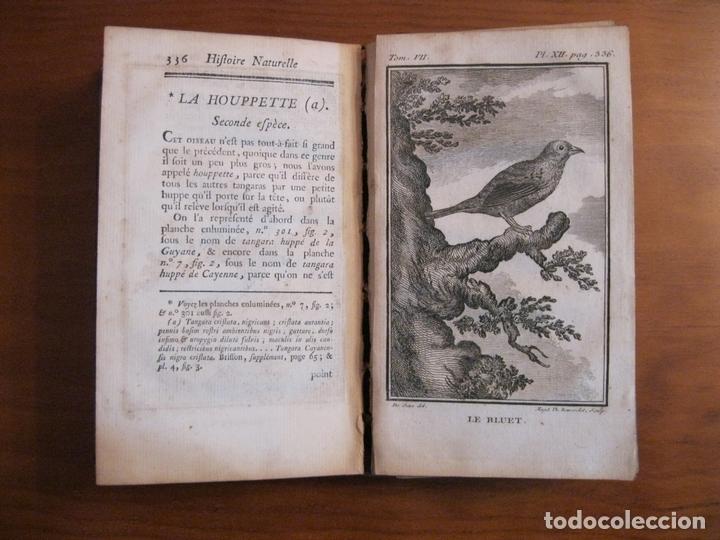 Libros antiguos: Histoire Naturelle, générale et particuliere, Tomo VII, 1779. Buffon. Con numerosos grabados - Foto 8 - 153434185