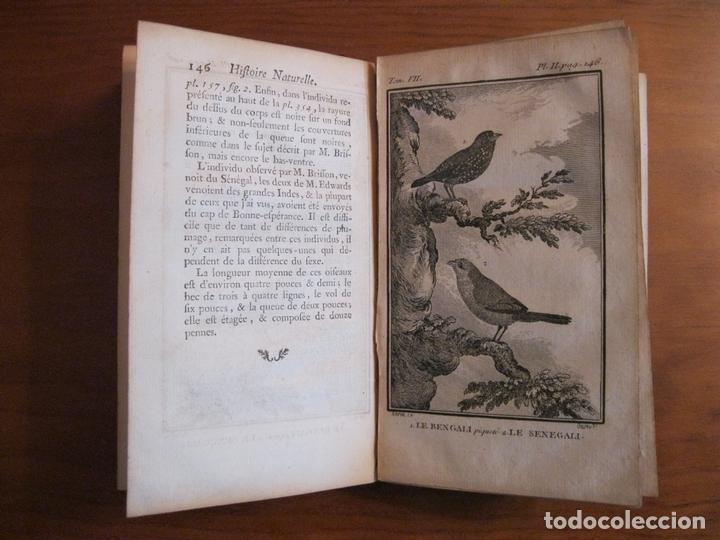 Libros antiguos: Histoire Naturelle, générale et particuliere, Tomo VII, 1779. Buffon. Con numerosos grabados - Foto 10 - 153434185