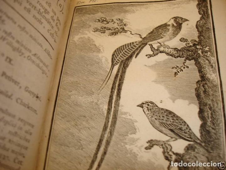 Libros antiguos: Histoire Naturelle, générale et particuliere, Tomo VII, 1779. Buffon. Con numerosos grabados - Foto 15 - 153434185