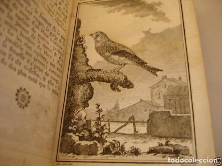 Libros antiguos: Histoire Naturelle, générale et particuliere, Tomo VII, 1779. Buffon. Con numerosos grabados - Foto 18 - 153434185