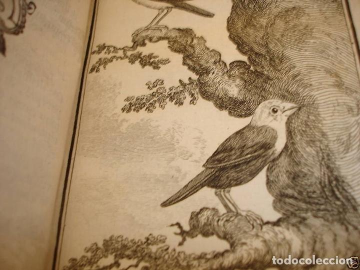 Libros antiguos: Histoire Naturelle, générale et particuliere, Tomo VII, 1779. Buffon. Con numerosos grabados - Foto 19 - 153434185