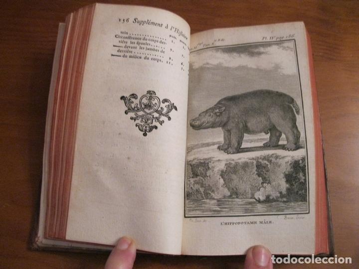 SUPLEMET A L HISTOIRE NATURELLE TOMO XI, 1782. BUFFON. POSEE GRABADOS (Libros Antiguos, Raros y Curiosos - Ciencias, Manuales y Oficios - Biología y Botánica)