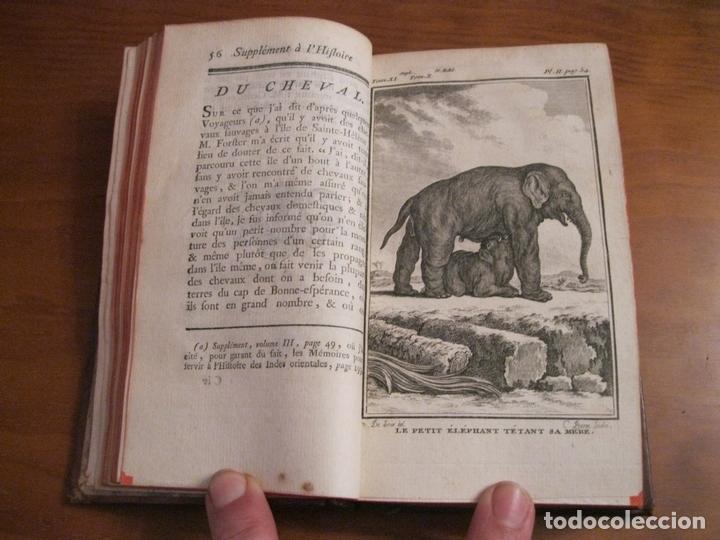 Libros antiguos: Suplemet a l histoire naturelle Tomo XI, 1782. Buffon. Posee grabados - Foto 5 - 153740322