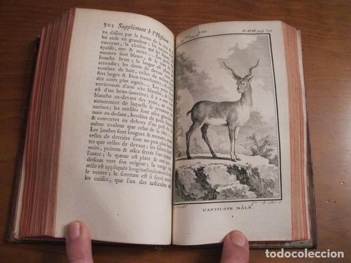 Libros antiguos: Suplemet a l histoire naturelle Tomo XI, 1782. Buffon. Posee grabados - Foto 9 - 153740322