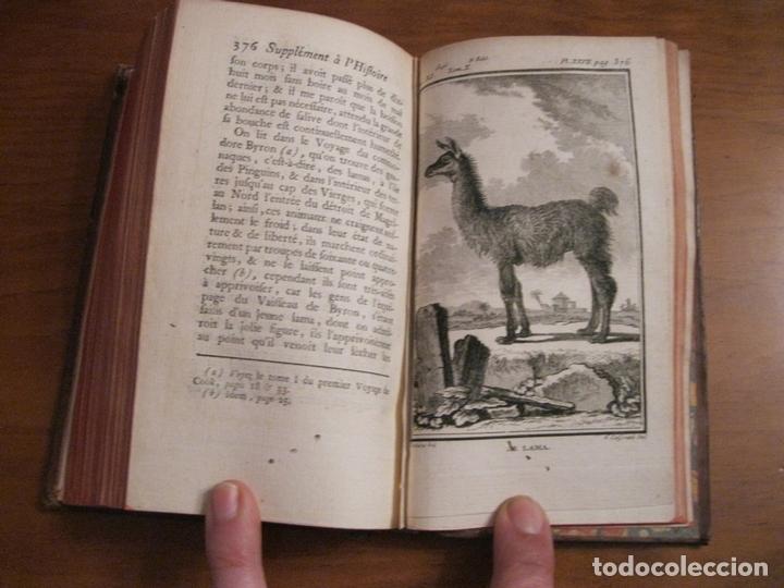 Libros antiguos: Suplemet a l histoire naturelle Tomo XI, 1782. Buffon. Posee grabados - Foto 10 - 153740322