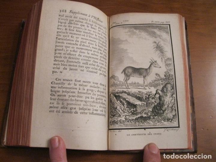 Libros antiguos: Suplemet a l histoire naturelle Tomo XI, 1782. Buffon. Posee grabados - Foto 11 - 153740322