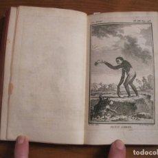 Libros antiguos: HISTOIRE NATURELLE, GÉNÉRALE ET PARTICULIÉRE... TOMO 28. 1768. BUFFON. POSEE 18 GRABADOS. Lote 153746130