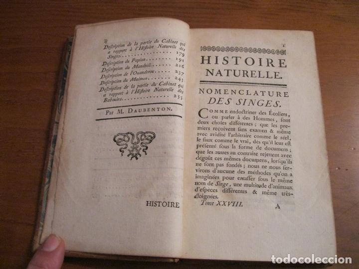 Libros antiguos: Histoire Naturelle, générale et particuliére... Tomo 28. 1768. Buffon. Posee 18 grabados - Foto 3 - 153746130