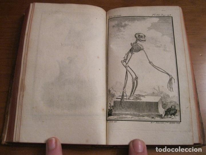 Libros antiguos: Histoire Naturelle, générale et particuliére... Tomo 28. 1768. Buffon. Posee 18 grabados - Foto 8 - 153746130