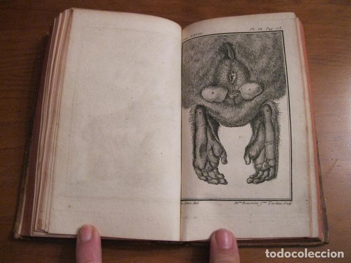 Libros antiguos: Histoire Naturelle, générale et particuliére... Tomo 28. 1768. Buffon. Posee 18 grabados - Foto 11 - 153746130