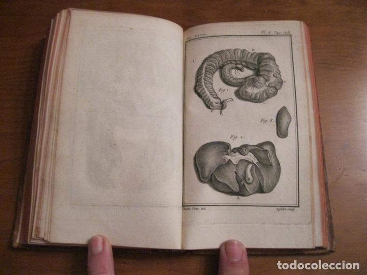 Libros antiguos: Histoire Naturelle, générale et particuliére... Tomo 28. 1768. Buffon. Posee 18 grabados - Foto 12 - 153746130