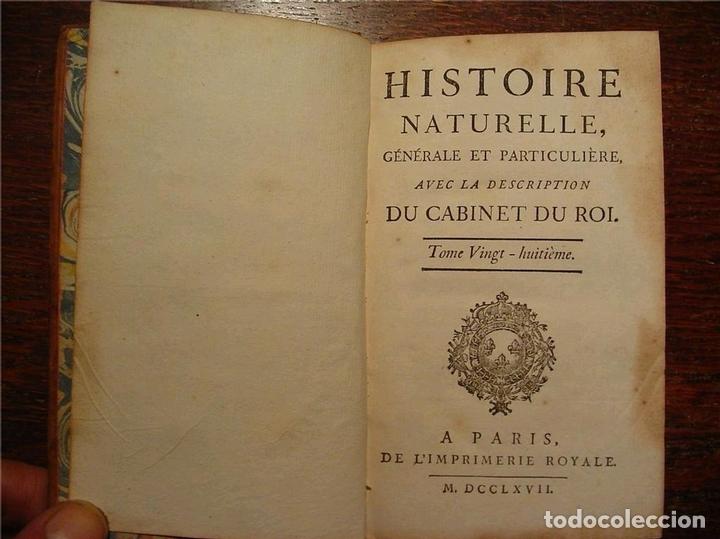 Libros antiguos: Histoire Naturelle, générale et particuliére... Tomo 28. 1768. Buffon. Posee 18 grabados - Foto 24 - 153746130