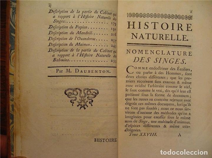 Libros antiguos: Histoire Naturelle, générale et particuliére... Tomo 28. 1768. Buffon. Posee 18 grabados - Foto 26 - 153746130