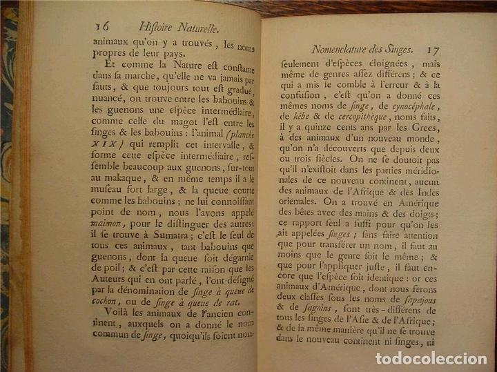 Libros antiguos: Histoire Naturelle, générale et particuliére... Tomo 28. 1768. Buffon. Posee 18 grabados - Foto 27 - 153746130