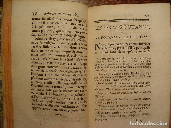 Libros antiguos: Histoire Naturelle, générale et particuliére... Tomo 28. 1768. Buffon. Posee 18 grabados - Foto 28 - 153746130