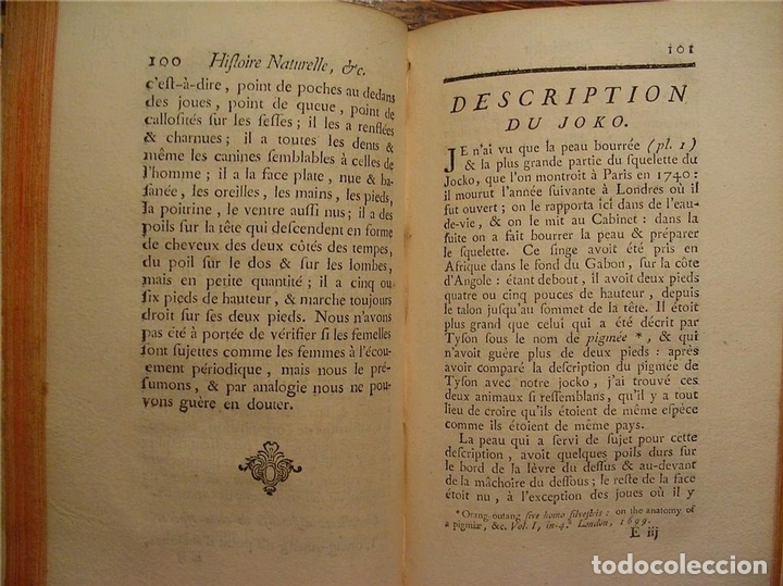 Libros antiguos: Histoire Naturelle, générale et particuliére... Tomo 28. 1768. Buffon. Posee 18 grabados - Foto 29 - 153746130