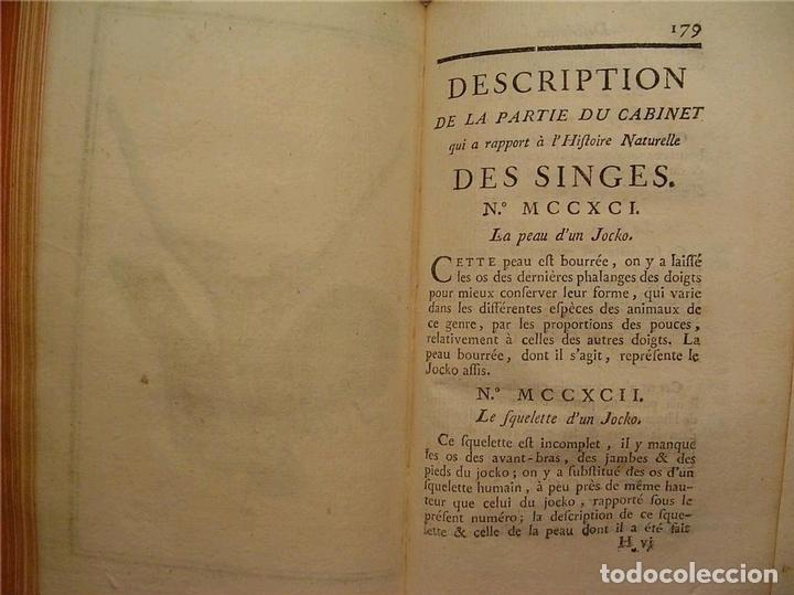 Libros antiguos: Histoire Naturelle, générale et particuliére... Tomo 28. 1768. Buffon. Posee 18 grabados - Foto 30 - 153746130