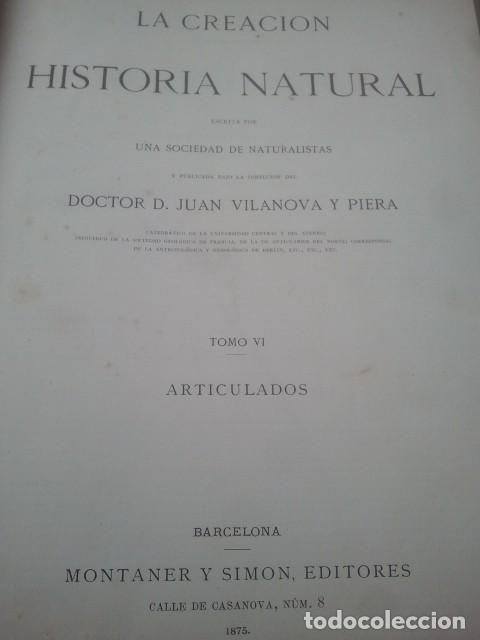 Libros antiguos: LA CREACIÓN - HISTORIA NATURAL - JUAN VILANOVA - TOMO VI - INVERTEBRADOS / ARTICULADOS - Foto 2 - 153855990