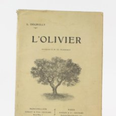 Libros antiguos: L'OLIVIER, L. DEGRULLY, 1907, PARIS, MONTPELLIER. 29X20CM. Lote 153947422