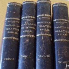 Libros antiguos: MARAVILLAS DE LA VIDA ANIMAL - HAMMERTON - JOAQUIN GIL 1º EDICION ABRIL 1930-COMPLETA 4 TOMOS. Lote 158894594