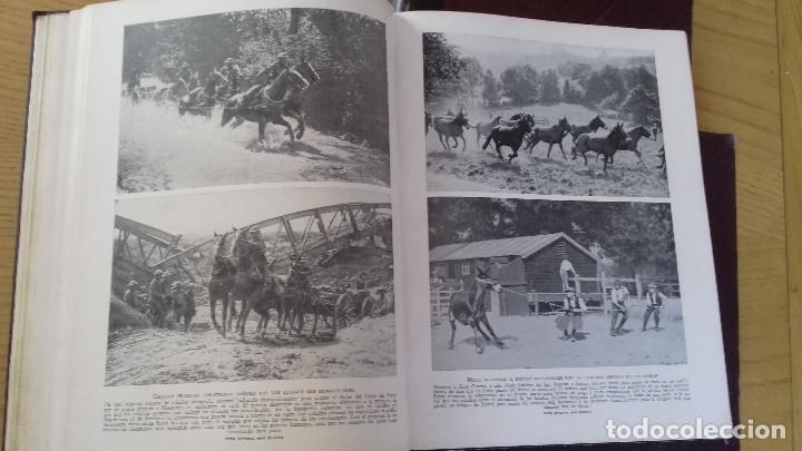 Libros antiguos: MARAVILLAS DE LA VIDA ANIMAL - HAMMERTON - JOAQUIN GIL 1º EDICION ABRIL 1930-COMPLETA 4 TOMOS - Foto 9 - 158894594